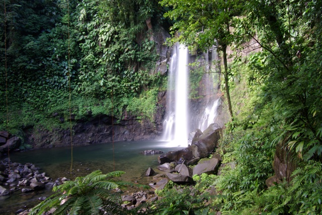K10D Guadeloupe 07_08 154.jpg